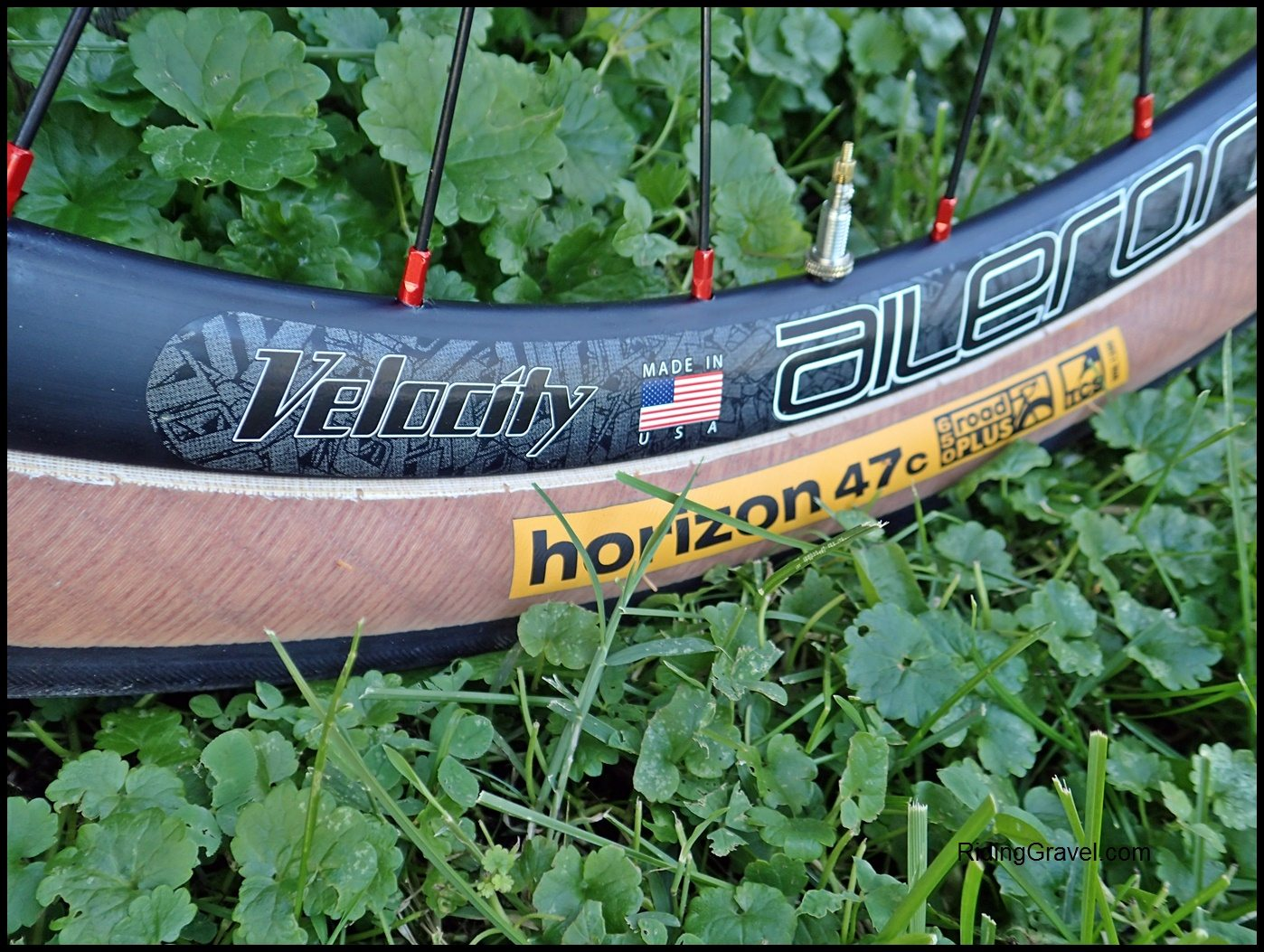 WTB Horizon 47 Tires: At The Finish