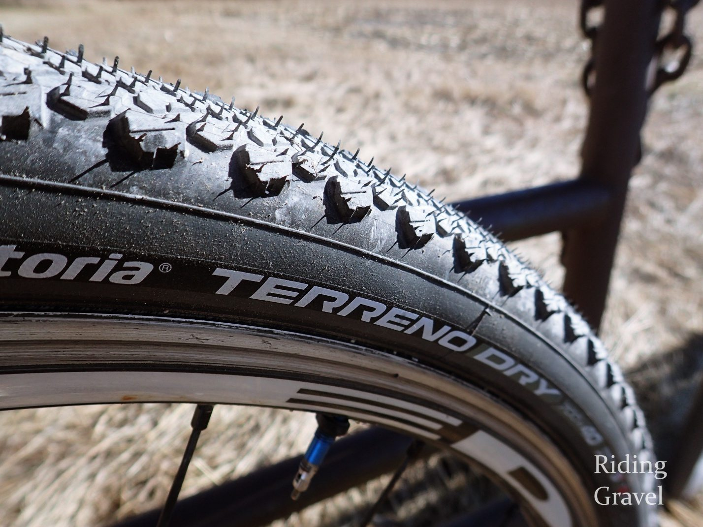 Vittoria Terreno Dry And Mix 40mm Tires: Checkpoint Part 1