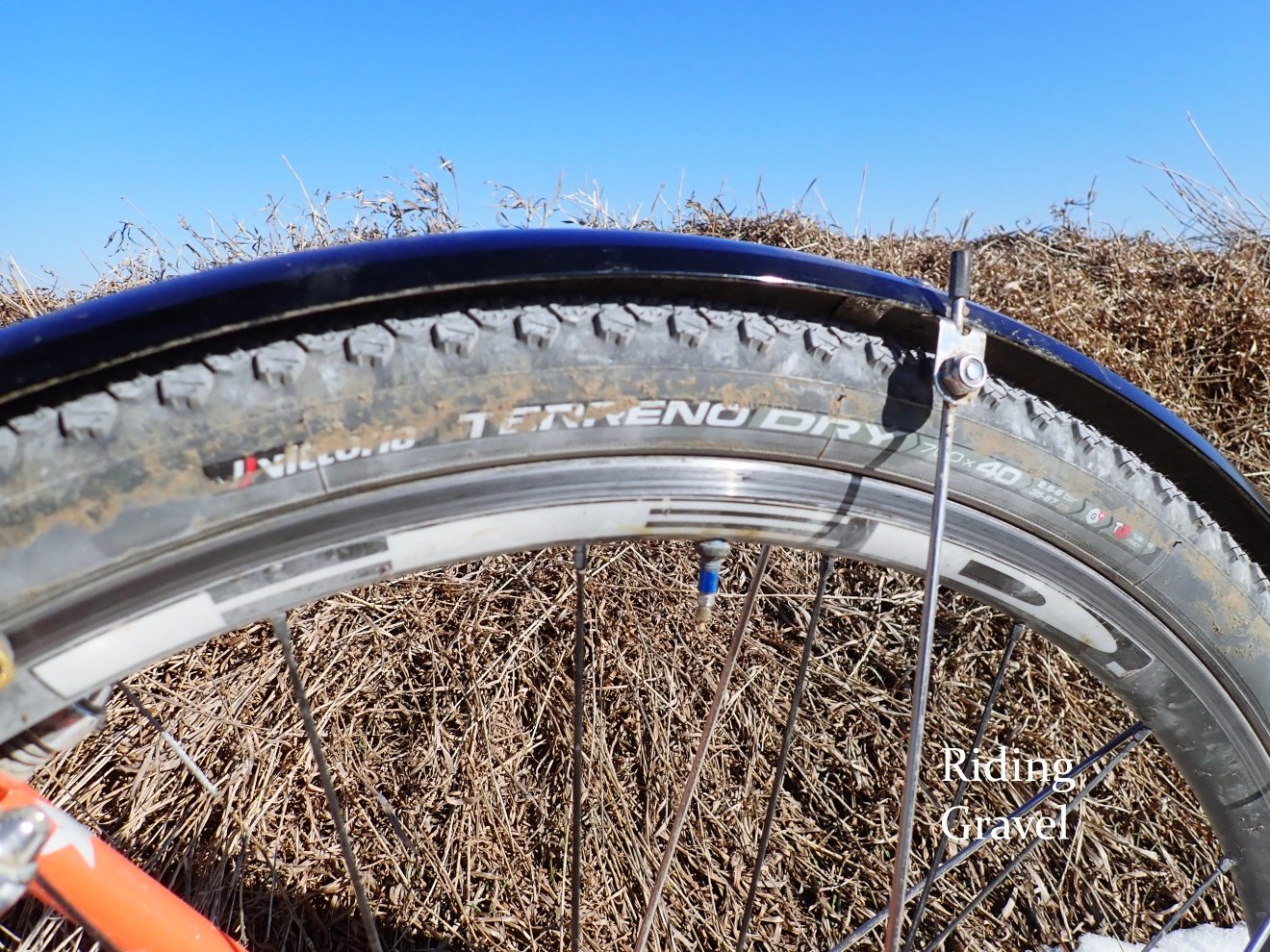 Vittoria Terreno Dry And Mix 40mm Tires: At The Finish Part 2