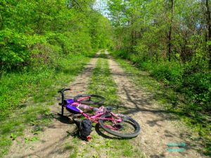 A two track with the pink Black Mountain Cycles MCD