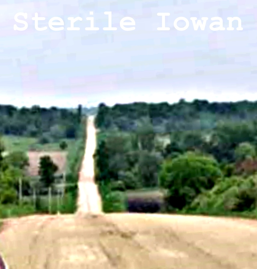 Gravel road scene