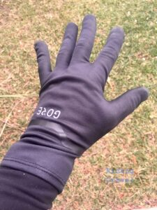 GORE-TEX Infinium Stretch Glove